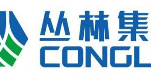 Chinese cement firm
