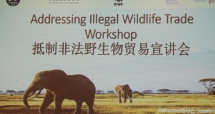 抵制非法野生物贸易宣讲会