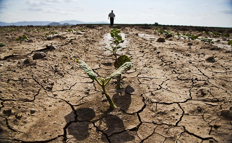Mozambique droughts