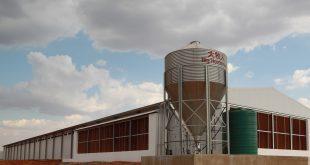 """中国养殖设备巨头——青岛""""大牧人""""机械股份有限公司首套蛋鸡育雏设备登录南非市场。据了解,这是中国首套最大、最高自动化育雏设备登录南非市场。采购这套设备的是南非罗文集团。"""